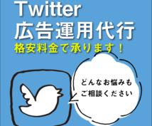 格安★Twitter広告運用代行します 月間5,000万円運用!あなたのアカウントの最適解を探します