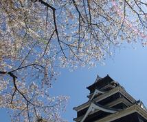 熊本城と桜の写真提供します!(・ι[[◎]]o