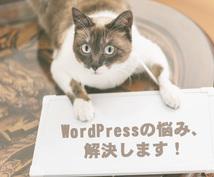 あなたのWordPress(個人)を診断します WordPressで販売実績がないあなたへ(個人サイト)