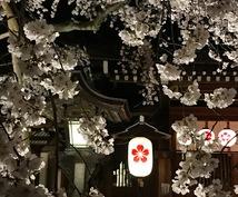 京都コーディネーターが京都旅のアドバイスをします 京都観光を予定されている方&今の京都情報を知りたい方へ