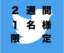 ★商材に適したアカウントに掲載できます!【毎週1名様限定2週間】Twitterによる広告・宣伝・拡散