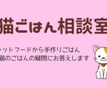 猫の健康のためのごはんをサポートします 大切な猫に健康で幸せに暮らしてほしい飼い主さんへ