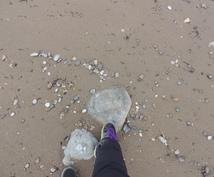 石ころの種類を東京大学院生の岩石研究家が鑑定します 河原や海岸で拾った石,お店で買った石の名前と由来がわかる!