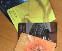 タロット•ルノルマン•オラクルカードで占います 気になる人の気持ち•音信不通の原因•進展の有無…他 占います