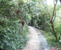 沖縄の旅を有意義に♡1日で行きたい観光スポットをスムーズに行けるルートを提案いたします♡