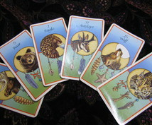 動物たちのカードであなたにアドバイスをお伝えします あなたの内面の課題・彼の気持ち・人生の選択などを一枚引きで。