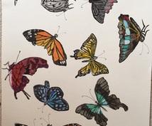 好きな動物、昆虫、花などを絵にします 大切なものを絵に残したいあなたへ