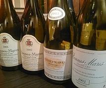ブルゴーニュワイン選びます ホームパーティーやワイン試飲会開催