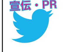 ココナラの出品を宣伝Twitter3アカウントフォロワー13000人以上×1日10回以上×4週間