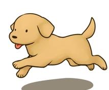 犬のしつけの方法、教えます もうどうしつけたらいいかわからない人に