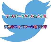 危なげなくフォロワーを増やす方法を教えます Twitterコンサルタントの私が全力サポート!
