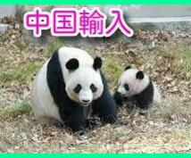 メルカリ・ヤフオクの仕入★中国輸入のやり方教えます 中国輸入の経験の無い方、中国仕入に興味のある方必見!