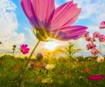 四柱推命で性格、相性、お悩みを解決していきます ピンチをチャンスに変える!あなたを幸せへと導きます♪