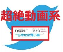 【★属性指定▶超絶動画系★】TwitterアカウントでCM情報拡散宣伝PR