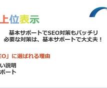 ホームページ診断・SEO対策で全力サポートします 【ココナラお試し価格】お気軽にお声掛けください。