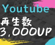 Youtube動画の再生数を3,000増やします 半額セール!Youtubeの早期収益化に!再生数増加サービス