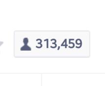 【ユーザー層小中高生8割】314000フォロワーのLINE@アカでブログ宣伝します