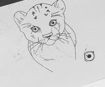 あなたのお好きな動物やペットのポストカード作ります ( ິ•ᆺ⃘• )ິ