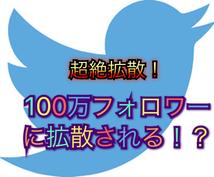 超絶拡散!!あなたのツイートを拡散しまくります 合計フォロワー100万以上のアカウントにお任せ下さい!