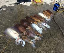 アオリイカ釣り ヤエン釣り 爆釣方法教えます ヤエン釣りを初めたばかりの人 なかなかうまくならない人