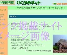 【無料枠あり】あなたのペット飼育ブログ・ウェブサイトをリンク集に掲載します!