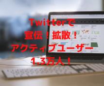 期間限定特価!Twitterで拡散します Twitterであなたの希望ツイートを3日間毎日拡散。