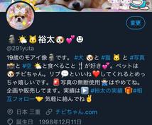 2つのTwitterアカウントで宣伝します フォロワー合計2万人はすべてリアルユーザーです