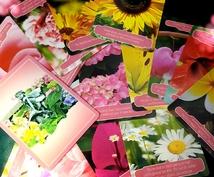 美しい花たちの『フラワーセラピーオラクルカード』であなたにメッセージをお伝えします✲*゚❁