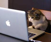 人気ブログランキングアップを応援致します 自身のブログをより多くの方に見て頂きたいアナタに