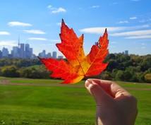 カナダより、お話し聞きます 日本は息苦しい?まずはメープルシロップとパンケーキどうぞ♬