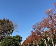 東京市部のジョギングコースについてご相談にのります 東京市部を走るランナーで、新しいコースを開拓したい方向けです
