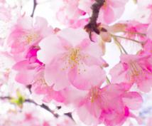 木花咲耶姫さま桜花ヒーリングアチューンメントします 木花咲耶姫さまの力強いエネルギーサポートと桜色の愛の波動を♡