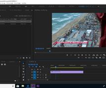 動画を日英翻訳して字幕を付けます TOEIC905点、社内翻訳者、PremierePro