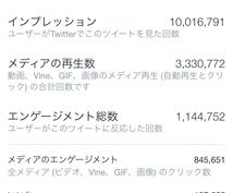 閲覧数1000万以上のTwitterで拡散します 5.1万RTと12.7万いいねされてます