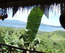 パラワンの魅力をご紹介します 緑がメッチャ濃い南の島に植林園を保有しています。