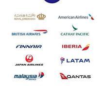 外資CA- 英文履歴書 ワンポイント添削します 客室乗務員用 英文CV(履歴書)