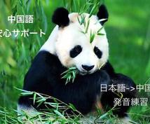 中国語/英語で現地の人と交流や中国語/英語翻訳ます 中国語/英語で現地の人と交流したい