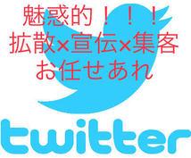 魅惑的!!Twitterで日本中にあなたを広めます ツイッターで集客/拡散/宣伝/ライティングならお任せ下さい♪