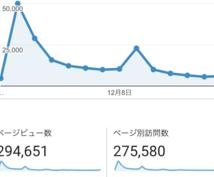 収益1万円以下のブログ初心者の方の相談にのります ブログ収益月1万円以下のあなたの今後を丁寧にお答えします。
