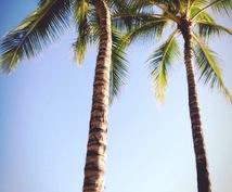 ハワイ在住学生がハワイのこと教えます ハワイに旅行に来る方、留学をお考えの方へ