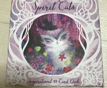 スピリットキャットオラクルカードで占います 猫からのニャンだかわからないメッセージを受け取りたい方