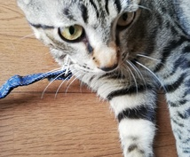 asukaさん専門施術します それではよろしくお願いします!!