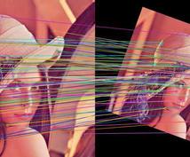 画像信号処理の実装を行います Deep Learningでの実装も行なえます。