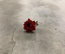 あなたに花言葉をつけます 世界にひとつだけの花を咲かせてください。