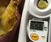 糖度40度超え‼︎蜜芋屋事業計画をレクチャーします 老若男女問わず人気のスイーツ☆