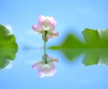 あなたを【マインドフルな存在】にします マインドフルに生きて、悩みや不安から自由な人生を生きましょう