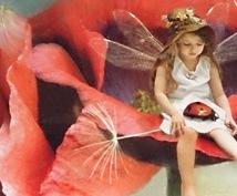 あなたに必要な天使や妖精からのメッセージをお伝えします!