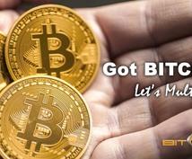 年収〇〇〇〇万円の私が教えます!月利30%!!!初めてのBitRegionを全てサポート致します。