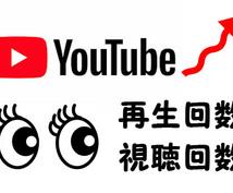 高品質◆Youtubeの動画を宣伝いたします 即対応◆再生回数が1000回以上増えるまでお手伝いします