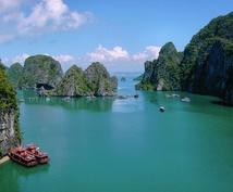 ベトナム語に関する全ての資料を翻訳します 日本語⇔ベトナム語 正確にベトナム語を翻訳したい方へ